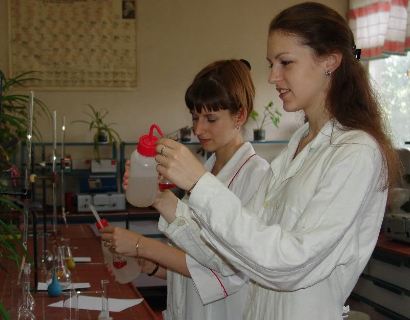 Educational process at the Faculty of Chemistry